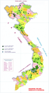 Map of coffee production in Vietnam