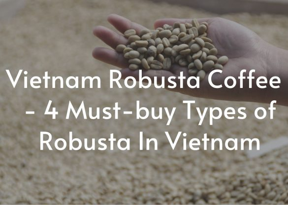Vietnam-Robusta-Coffee-4-Must-buy-Types-of-Robusta-In-Vietnam