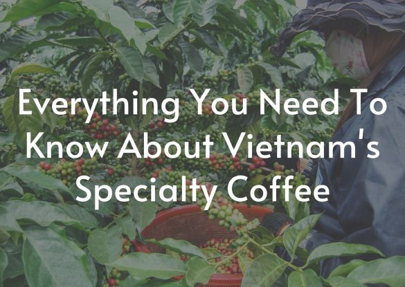 everything-you-need-to-know-about-Vietnams-Specialty-coffee