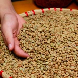High quality honey processed coffee