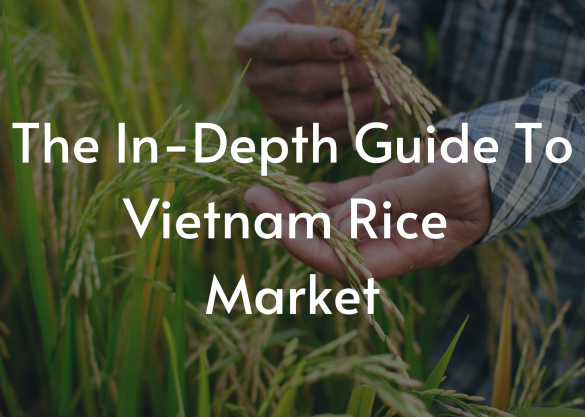 The In-Depth Guide To Vietnam Rice Market