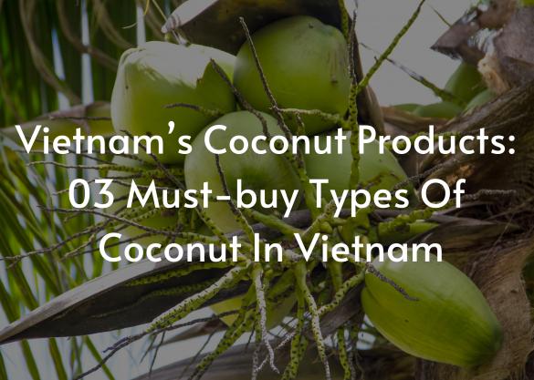 Vietnam's Coconut Products 03 Must-buy Types Of Coconut In Vietnam